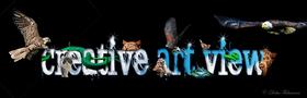 https://pxportfolios.s3.amazonaws.com/users/3454556/logos/medium_website1f2e06f3452523d4df496b7e8ceadb48.jpg